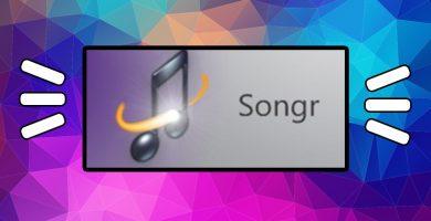 banner-songr